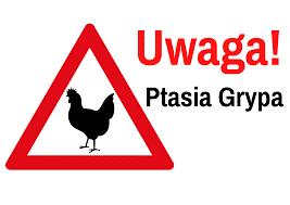 Ptasia grypa H5N8 w Powiecie Rawickim!