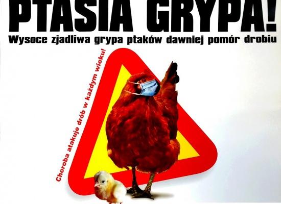 ROZPORZĄDZENIE WOJEWODY dot. grypy ptaków w pow. trzebnickim